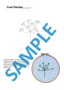 Cow parsley preview